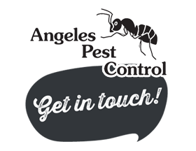 Get in touch with Angeles Pest Control!